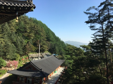Corée du Sud 383