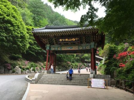 Corée du Sud 425